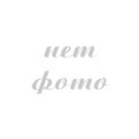 Кресло складное с полкой